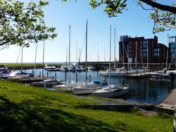 Malmö...la ville du développement durable !