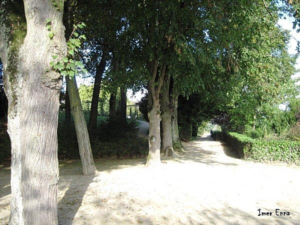 La-Mayenne-2341---Copie.JPG