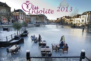 miss insolite 2013