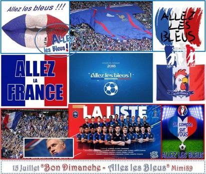 Bon Dimanche ! Allez les Bleus !!!