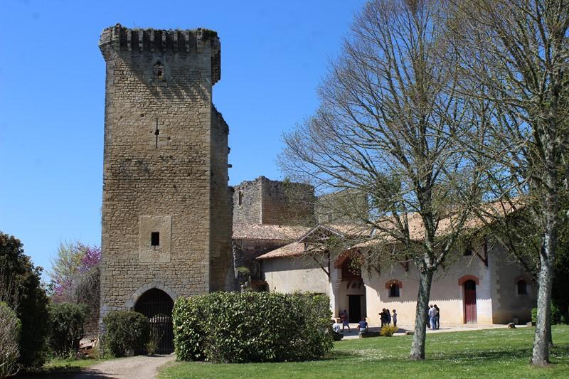 Château Vieux de Roquetaillade