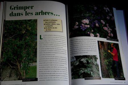Books (2-5)