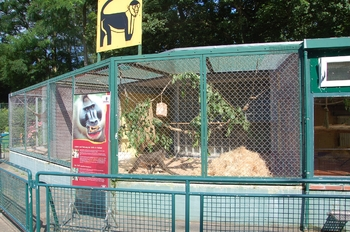 Zoo Saarbrücken 2012 068
