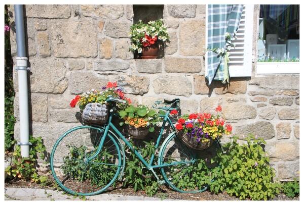 joli vélo fleuri (Gimel-les-Cascades - 19)