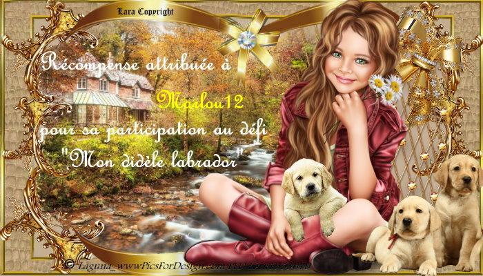 """Défis 13 """"Mon fidèle labrador"""""""