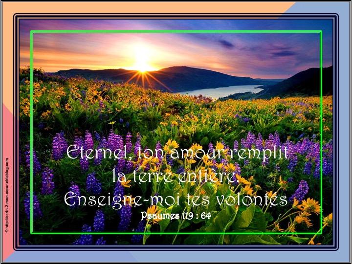 Eternel, ton amour remplit la terre - Psaumes 119 : 64