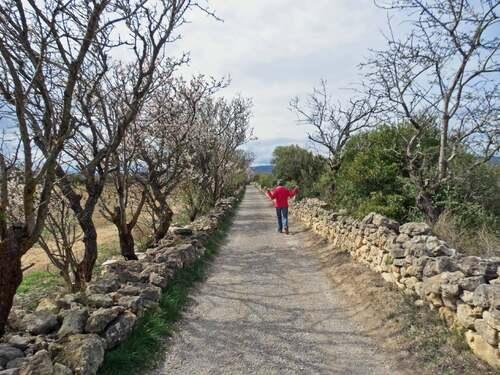 Le Sentier du Berger depuis Leucate-Village
