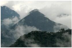 Des forêts mais pas de boa, du 14 au 30 août 2014