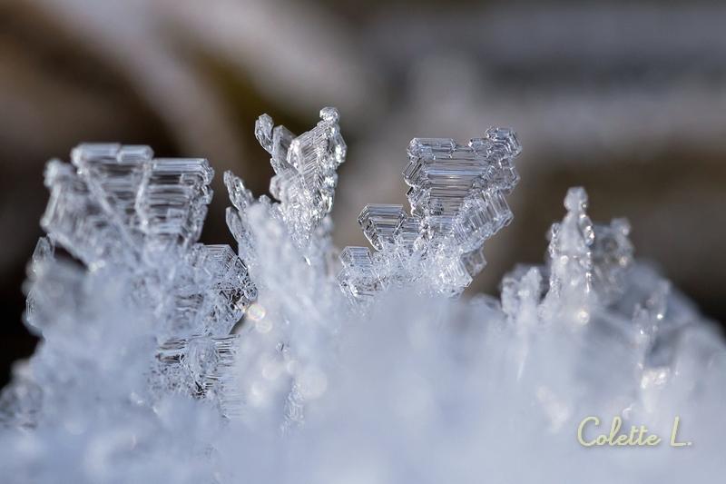 Sculptures cristallines