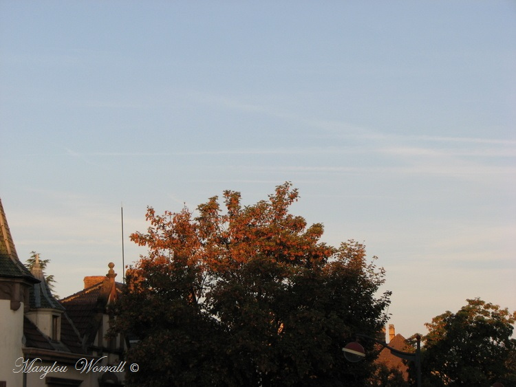 Ciel d'Alsace 380