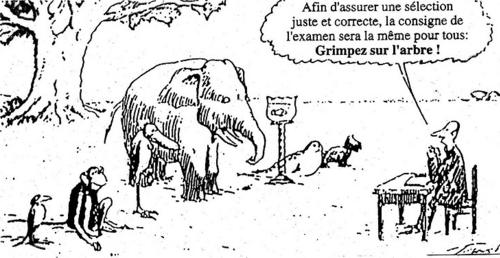 La pédagogie Freinet : LA découverte !