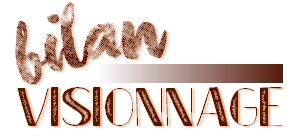 BILAN visionnage • novembre & décembre 2015