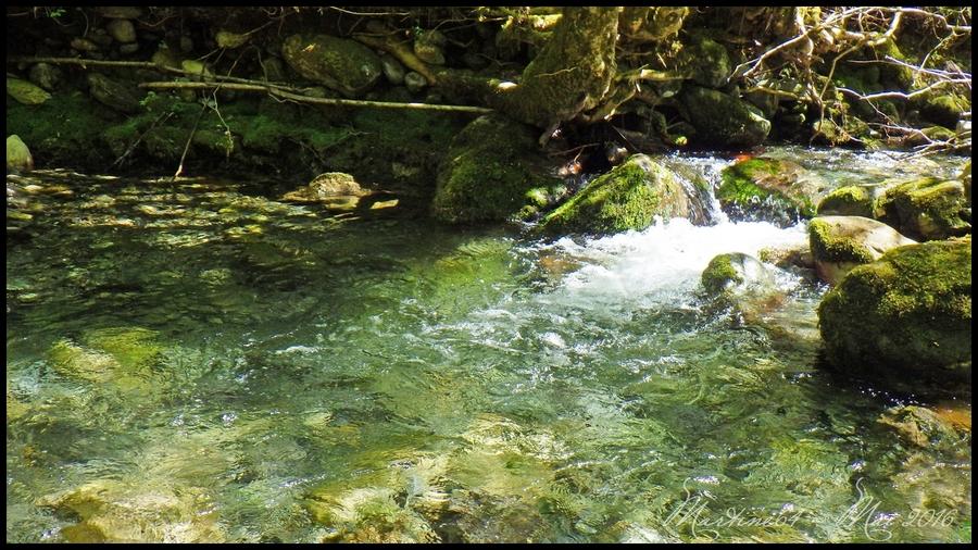 Pêche sur un nouveau ruisseau !