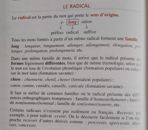 A / Le radical