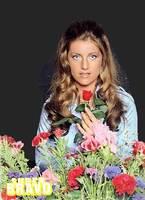 1974 / 1976 : le gilet bleu marine à fleurs métalliques