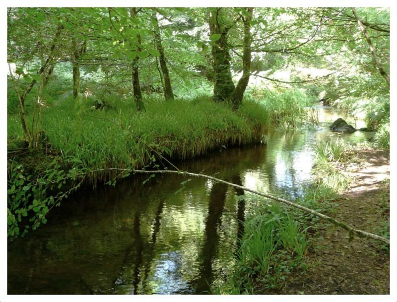 Le Clair Ruisseau du Huelgoat
