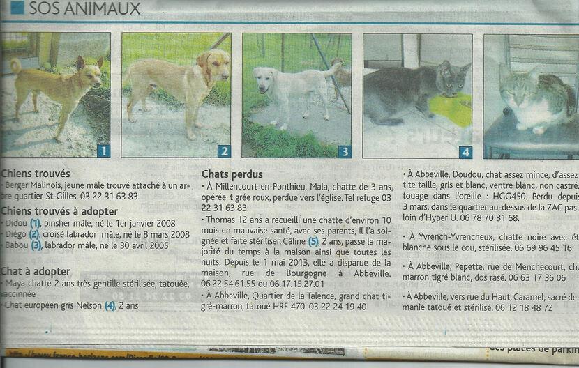 Le Journal d'Abbeville - le 20/06/13