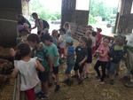 Notre sortie à la ferme de Guebling