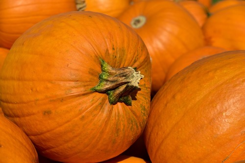 Repas idéal pour célébrer Samhain