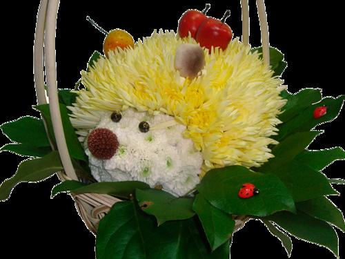 Animaux fleurs