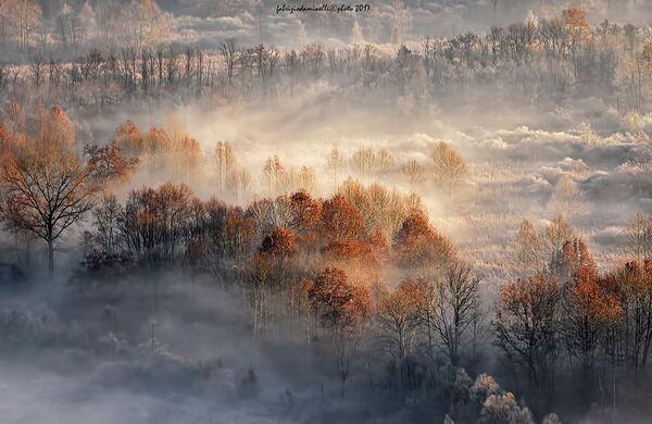 Magnifiques photos variées du Net