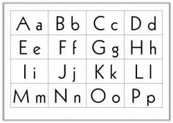 Le dictionnaire et l'ordre alphabétique CE1