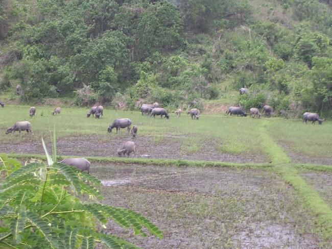 Défi de Khanel - Les paysages