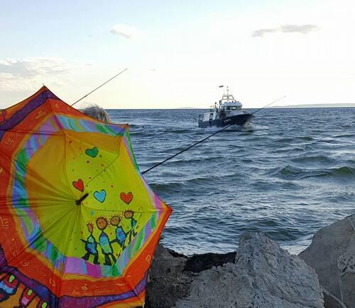 Parapluies dans le Gard