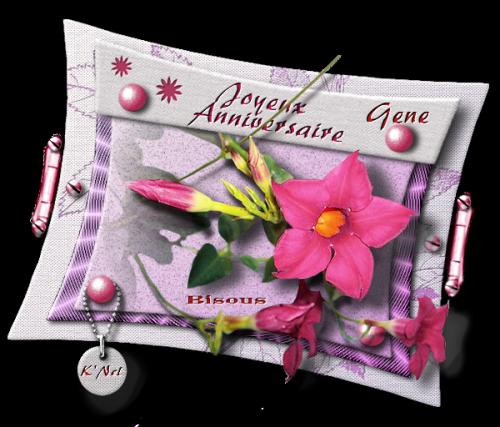 Cadeaux pour anniversaire 2012