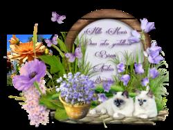 Cadeau de Célysia