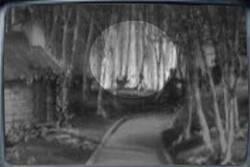 Pas normal: Le pendu du magicien d'Oz