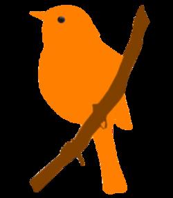 Silhouettes oiseaux