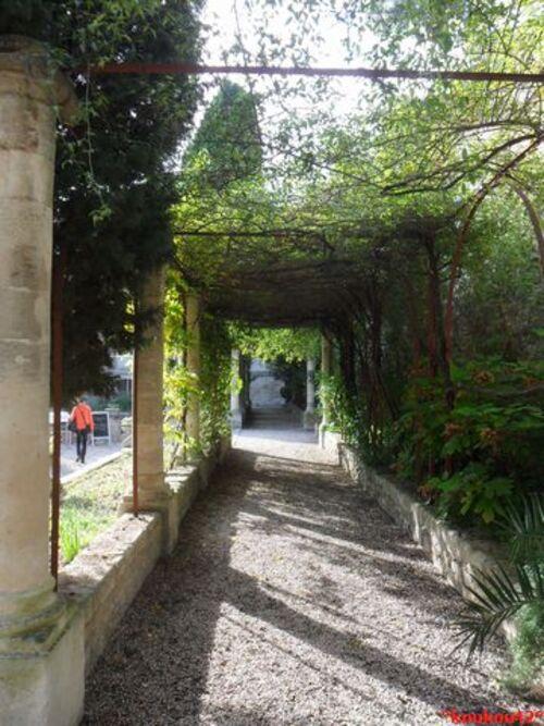 Echappé belle Avignonnaise. L'abbaye Saint-André. (2)