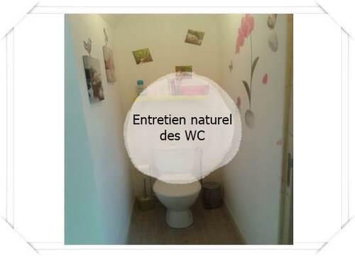 Entretien naturel des WC