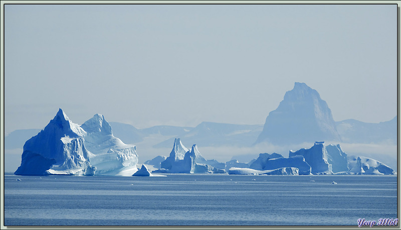 Icebergs dans le lointain - Fjord Uummannaq - Groenland