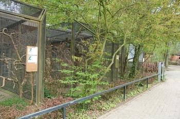 Zoo Osnabruck d50 2012 171