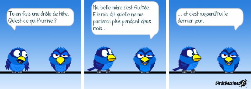 Les birds...... du samedi !......