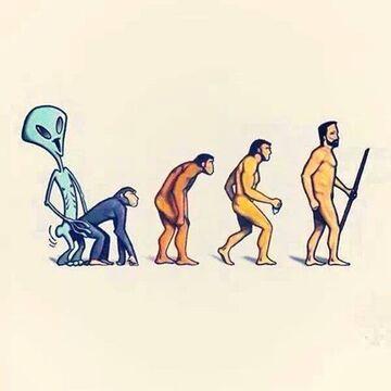 Evolution bis