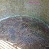 Mosaïques gallo romaines dans le parc de la Garenne