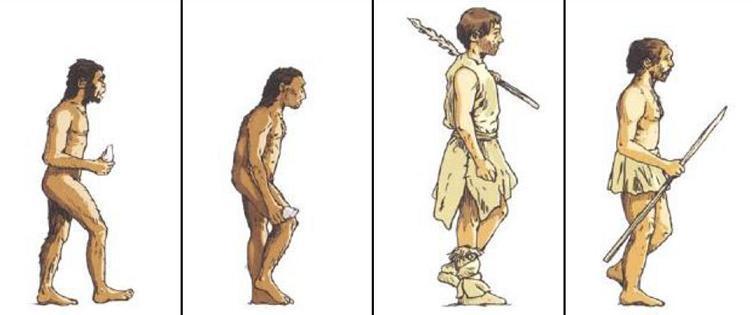 La Prehistoire Ce2 Cm Lecons Traces Ecrites Evaluations