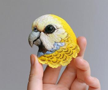 Les oiseaux de Paulina ...
