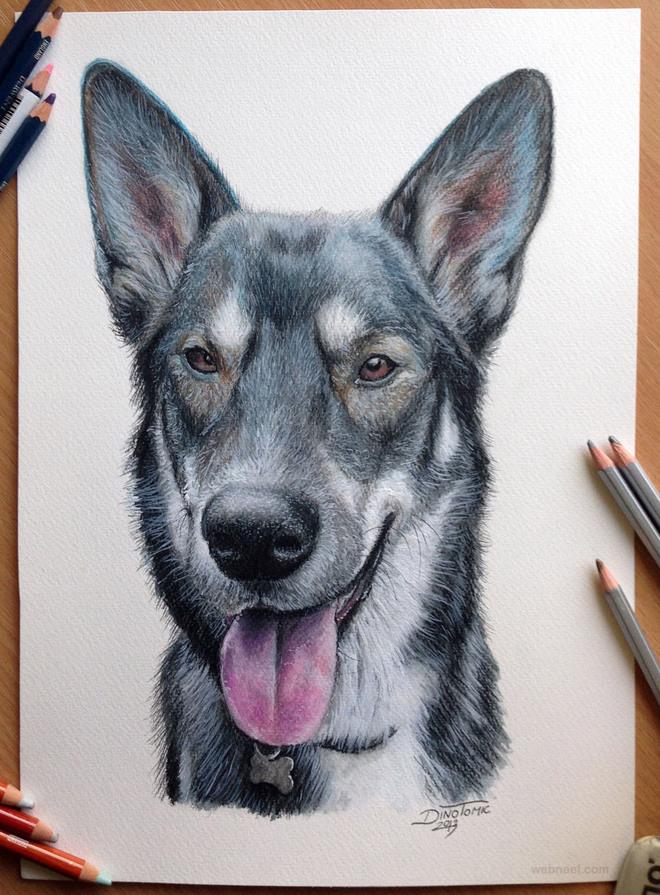 dog drawing animals