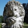 lion endormi Ferrieres