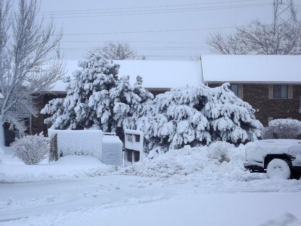 De beaux paysages neigeux.