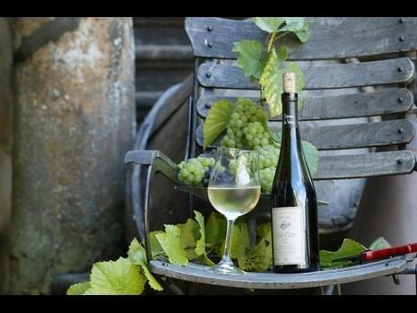 1426-1293972077-vins-de-vaux---465fx349f