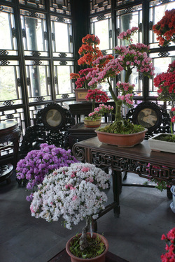 La vraie richesse de la chine: sa culture