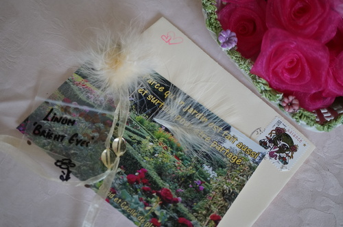 Seeds of Love : petit sachet, grand bonheur, semaine de folie