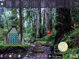 Jouer à Reserve forest escape