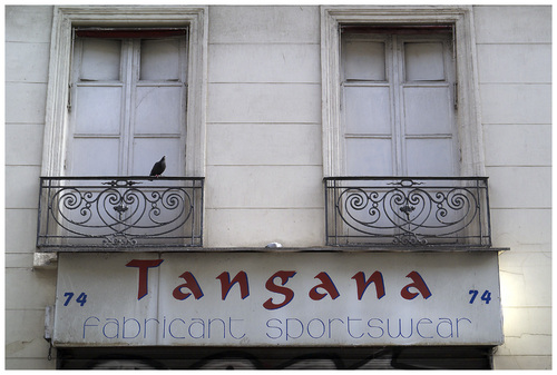 Tangana