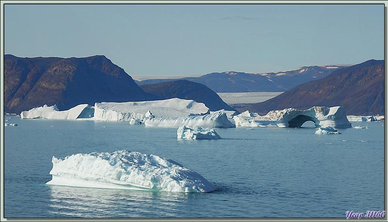 Navigation dans le Fjord Inglefield : observation d'une zone de très beaux icebergs - Région de Qaanaaq - Groenland